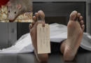 मोहाली के अस्पताल में हड़कंप, चूहे खा गए महिला के शव से होंठ और कान
