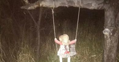 नदी किनारे पेड़ पर बैठी इस गुड़िया ने लोगों के बीच फैलाई दशहत, डर में जी रहे लोग, जानें पूरी खबर